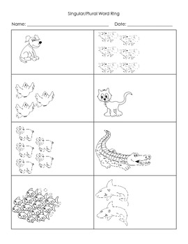 Singular/Plural Animal Cards - Common Core