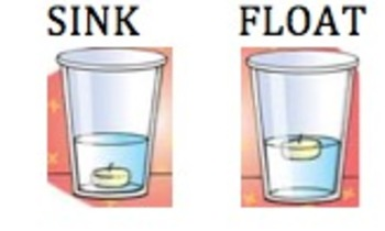 Sink or Float Lesson Plan- Grade 1
