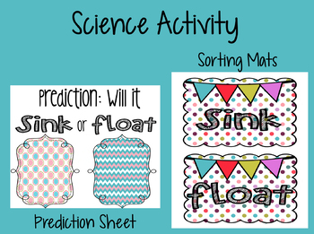 Sink or Float Science Activity