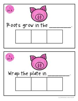 Sir Oinks-a-lot Working with oi and oy words Activities, worksheets and a book!