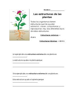 Sistemas/Estructuras de las plantas/ Plant Systems and Structures in Spanish