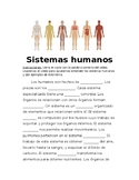 Sistemas humanas- Systems of the Human Body in Spanish