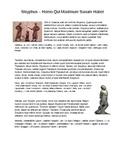 Sisyphus Story - Translating Participles (Latin II)
