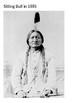 Sitting Bull Source Pack
