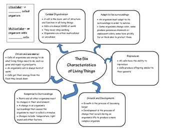 Six Characteristics of Living Organisms Graphic Organizer