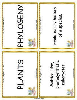 Six Kingdoms of Life Vocabulary Cards