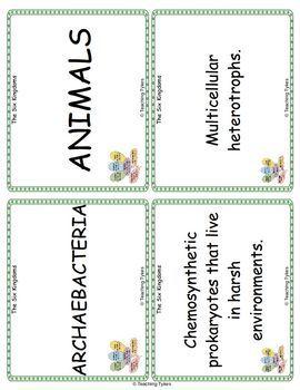 Six Kingdoms Vocabulary Cards