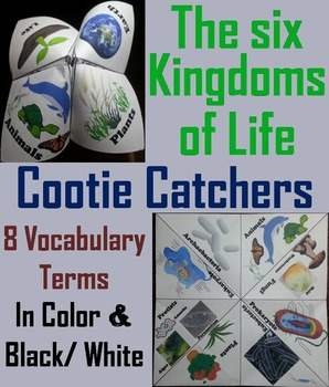 The Six Kingdoms of Life Activity: Plants, Animals, Bacteria, Protists, etc.