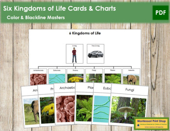 Six Kingdoms of Life: Charts and Cards