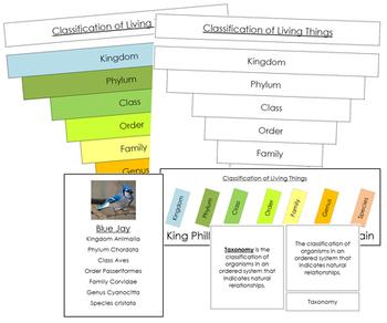 Six Kingdoms of Life: Classification Concepts