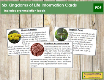 Six Kingdoms of Life: Information Cards