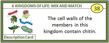 Kingdoms of Life - Mix and Match Game {54 Cards With Editable Template}