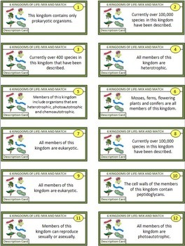 Of life mix and match game 54 cards with editable template kingdoms of life mix and match game 54 cards with editable template pronofoot35fo Images