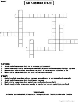 6 Kingdoms Of Life Worksheet: six kingdoms of life worksheet crossword puzzle by science spot,