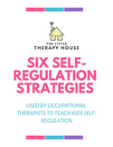 Six Self-Regulation Strategies Used by Occupational Therapists