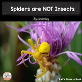 Spiders Are NOT Insects Let's Make a Book
