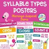 Six Syllable Types Posters Flamingo Tropical Theme