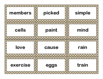 Sixth 100 Fry Sight Words Flash Cards