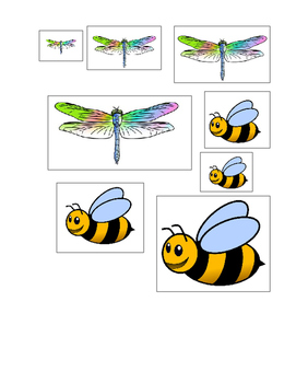 Size Sequencing with Insects