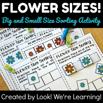 Size Sorting for Early Grades: Big and Small Flower Size Sorting Activity