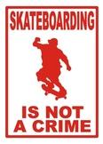 Skateboarding Poster
