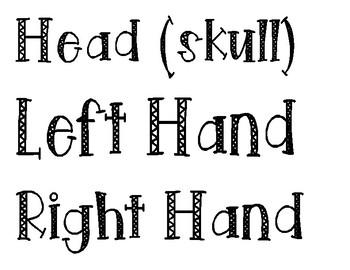 Skeletal Body Parts