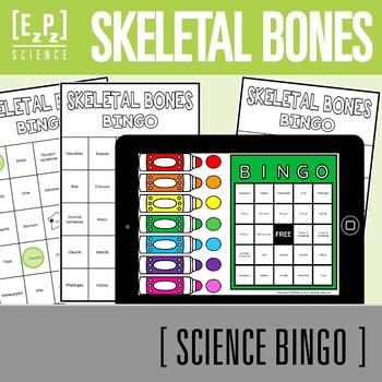 Skeletal Bones Science BINGO