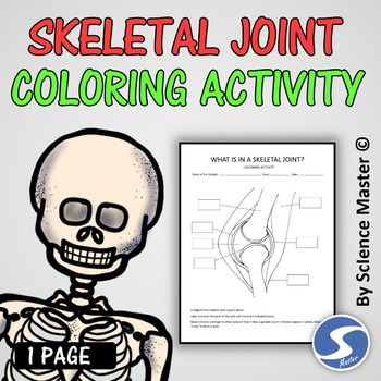 Skeletal Joint Coloring Activity