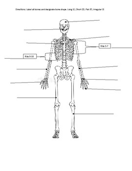 Skeletal Labeling Packet