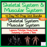 Skeletal & Muscular Systems 10 Day NO PREP Unit Bundle: Lessons Activities Tests