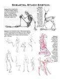 Skeletal Study Sketch