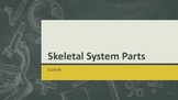Skeletal System  With Vocabulary in English and Spanish!
