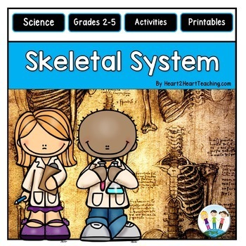 The Human Body - Skeletal System - Our Bones, Teeth, Joints & More!