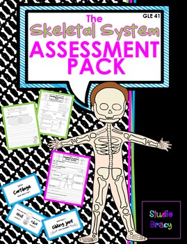 Skeletal System Assessment BUNDLE