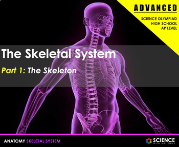 Skeletal System - Bones, Bone Structure, Joints, Disorders