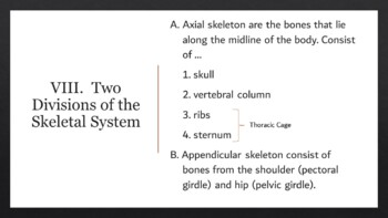 Skeletal System Complete Lesson (PowerPoints and Assessments)