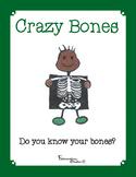 Anatomy Skeletal System Bones File Folder Game & Cut and P