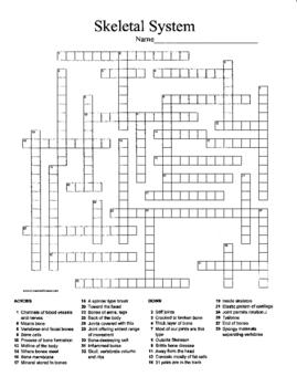 skeletal system crossword Circulatory System Crossword Puzzle