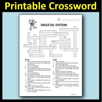 Skeletal System Crossword {Editable}