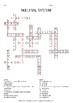Skeletal System Crossword Puzzle
