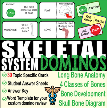 Skeletal System ~DOMINO REVIEW~ 30 Cards + Answer Sheets+Key- ANATOMY