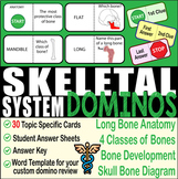 Skeletal System ~DOMINO REVIEW~ 30 Cards + Answer Sheets+K
