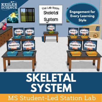Skeletal System Student-Led Station Lab
