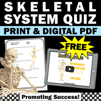 FREE Download Skeletal System Science Human Body Activitie