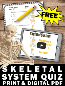 FREE Skeletal System Activity, Supplements Human Body Systems Middle School  Unit