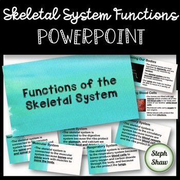 Skeletal System Functions PowerPoint