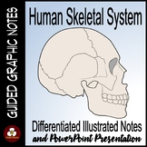 Skeletal System Guided Graphic Notes with PowerPoint