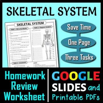Skeletal System Homework Review Worksheet / Test Prep {Editable}