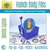 Skeletal System Human Body Files