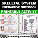 Skeletal System Foldable Human Body Systems Interactive Notebook Activity